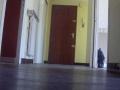 couloir-vue-3